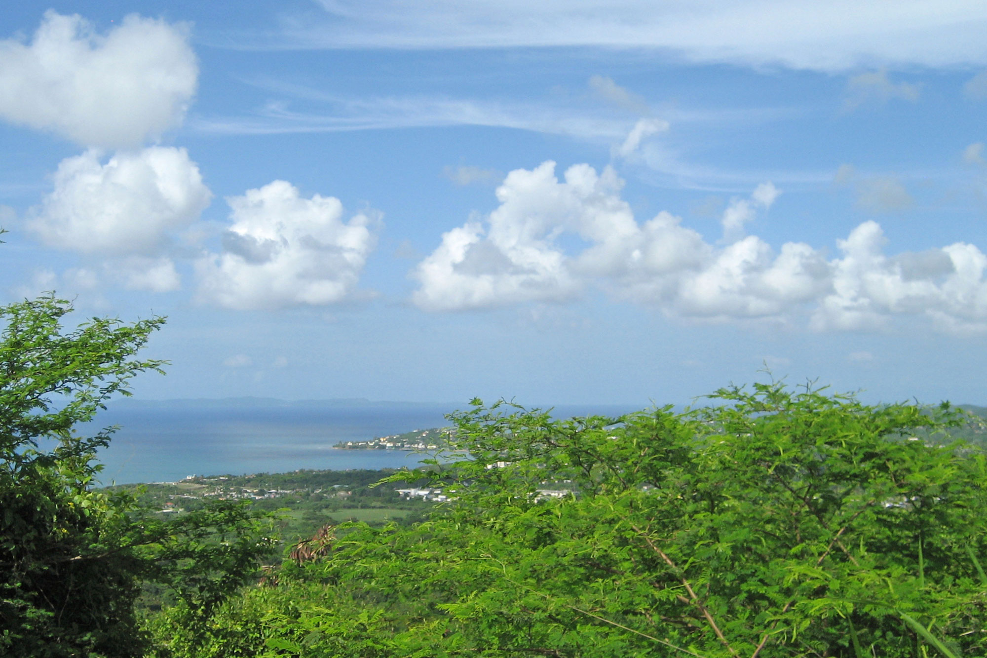 Vieques House View